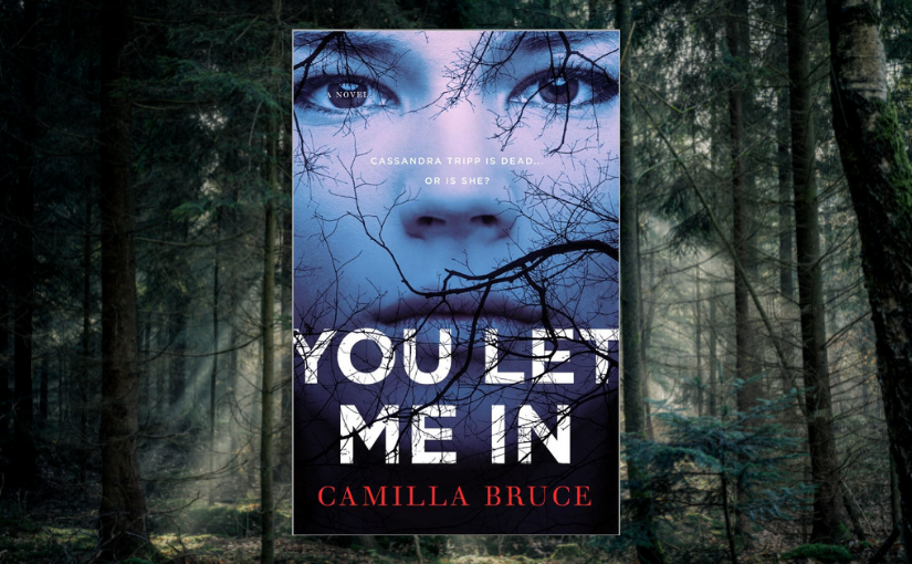 YOU LET ME IN is OUT in theUS!